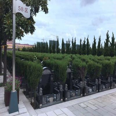 永安公墓传统墓